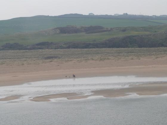 Camel Estuary towards Rock