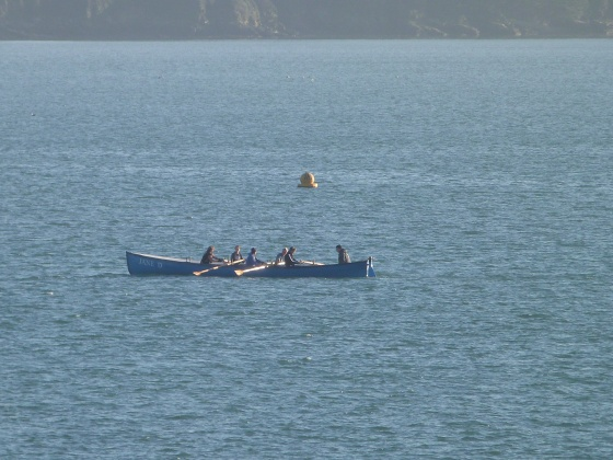 rowing on The Camel Estuary in Padstow